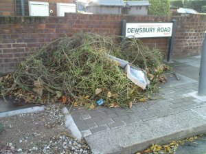 Dewsbury Road Tree Waste